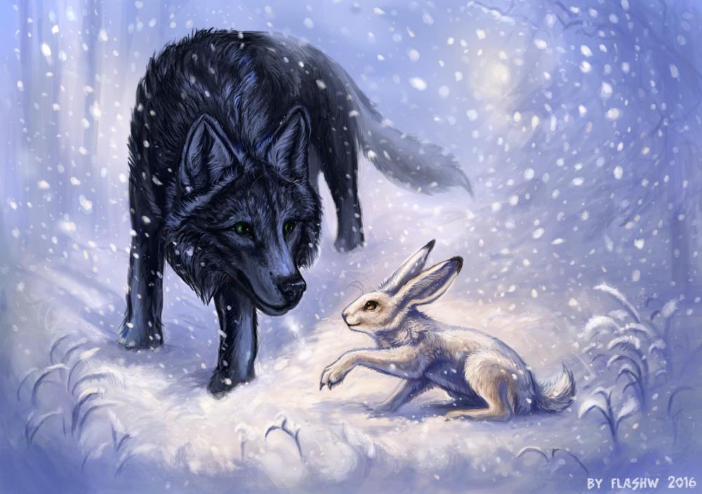Обои для рабочего стола Черный волк и белый заяц под падающим снегом, by Flashw