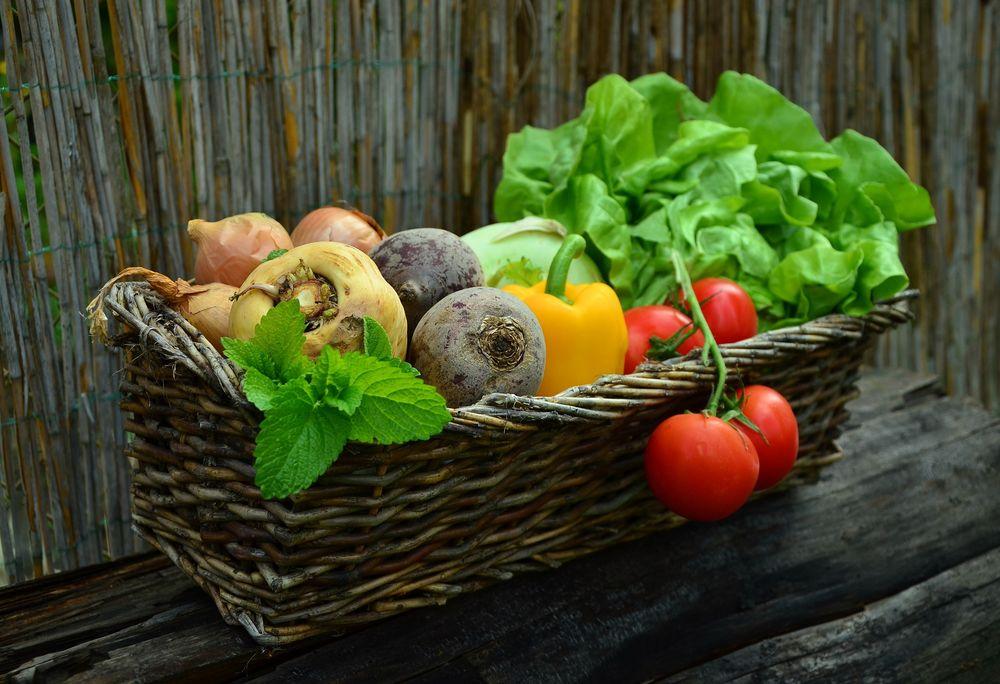 Картинки по запросу овощи и зелень