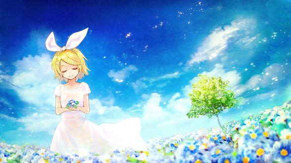 Обои Вокалоид Кагамине Рин / vocaloid Kagamine Rin идет по цветущему лугу, держа в руке букетик голубых цветов