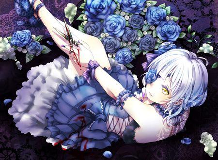 Обои Barasuishou окруженная синими розами, держит в руке окровавленные ножницы из аниме Девы Розена / Rozen Maiden
