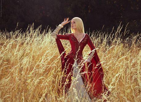 Обои Cersei Lannister from books A Song of Ice and Fire / Серсея Ланнистер - персонаж серии фэнтези-романов Песнь Льда и Огня в длинном платье стоит в высокой траве, by bellatrixaiden