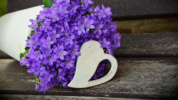 Обои Букет фиолетовых цветов и деревянное сердечко на скамейке
