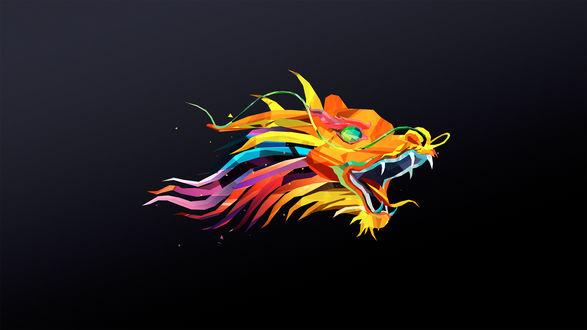 Обои Цветная голова дракона на черном фоне