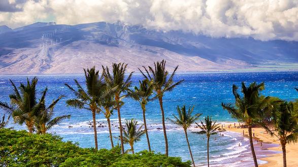 Обои Пальмы, пляж, отдыхающие люди, море, горы и облака