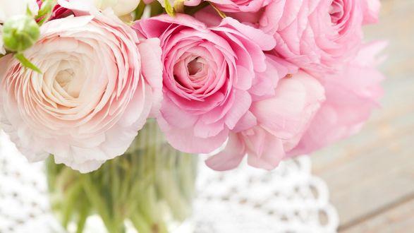 Обои Букет нежно-розовых ранункулюсов в вазе