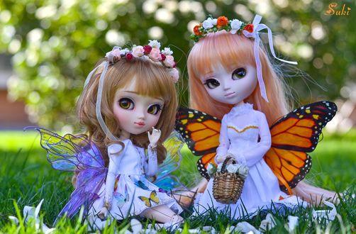 Обои Две красивые куклы-феи сидят на траве, Suri