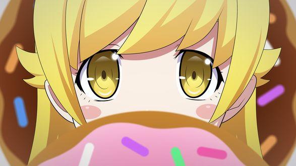 Обои Синобу Осино / Shinobu Oshino смотрит на пончики, кадр из аниме Фальшивая история / Nisemonogatari