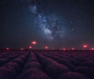 Обои Лавандовое поле, и ночное небо, в котором виден космос, фотограф Краси Матаров