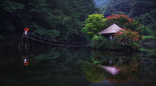 Обои Девушка с красным зонтом стоит на мостике, ведущем к домику на воде, она и вся природа вместе с домиком отражается в прозрачной воде, фотограф Jaewoon U