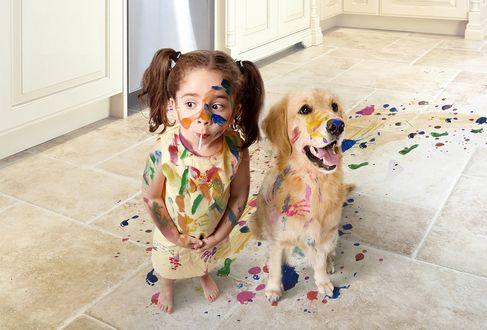 Обои Измазанная в краске девочка стоит с невинным взглядом и чупа-чупсом во рту, около измазанной собаки породы золотистый ретривер