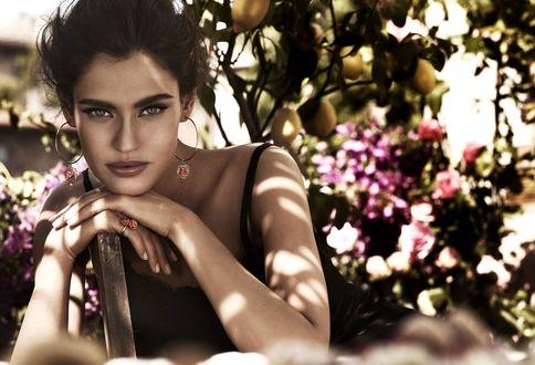 Обои Сероглазая модель Bianca Balti / Бьянка Балти сидит среди фруктового сада, облокотившись на спинку стула, фото для Dolce and Gabbana / Дольче и Габбана в рекламе ювелирных украшений