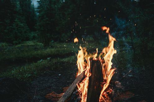 Обои Языки пламени костра, фотограф Viktor Mogilat