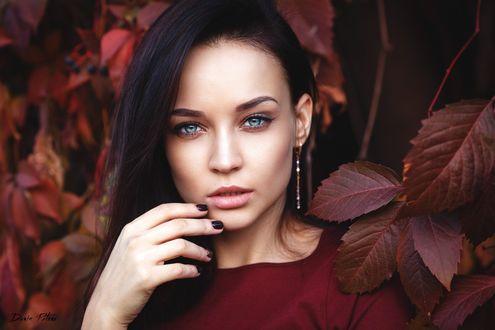 Обои Модель Angelina Petrova / Ангелина Петрова позирует среди осенней листвы, поднеся руку к губам, by Denis Petrov
