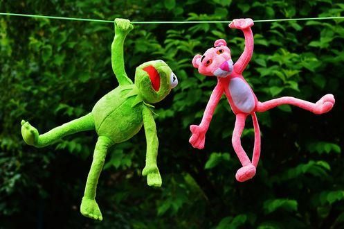 Обои Куклы лягушонок Кермит и Розовая пантера сушатся на веревке, на фоне зеленых листьев