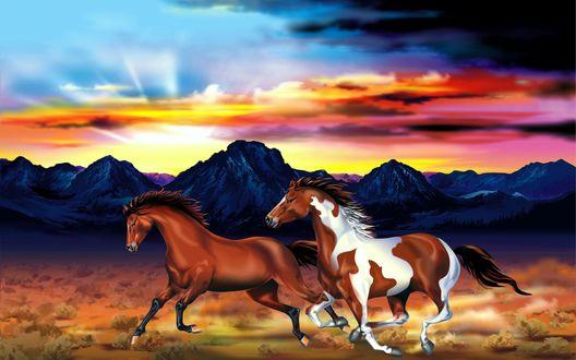 Обои Две лошади скачут по полю на фоне гор