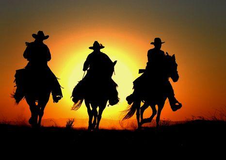 Обои Силуэты трех ковбоев, скачущих на фоне заходящего солнца