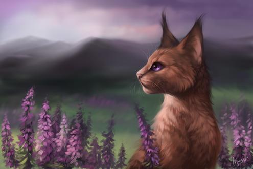 Обои Верескоглазка / Heathertail из серии романов Коты-Воители / Cats-Warriors, by M-Y-S-T-l-C