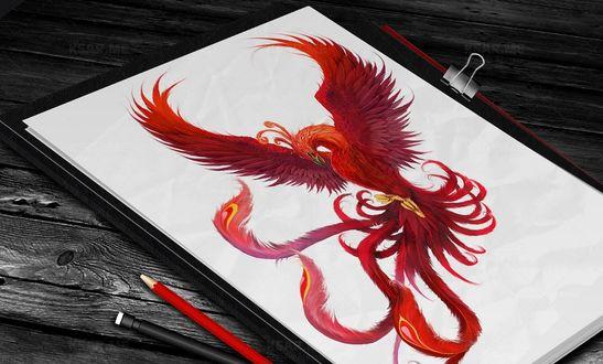 Обои Листок с нарисованным фениксом лежит на столе вместе с карандашами