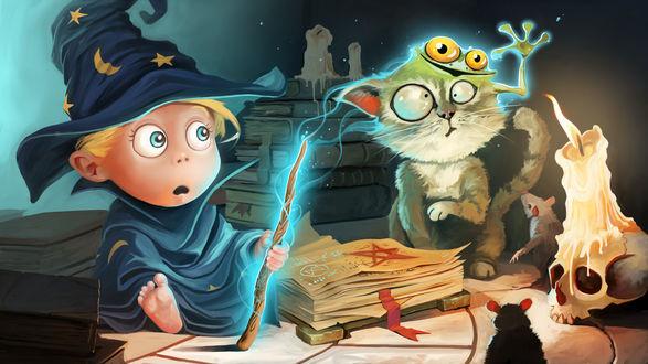 Обои Маленький волшебник ошибся с заклинанием и у сидящего рядом кота на голове появилась лягушка, by Dominik Mayer