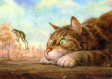 Обои Кот пристально смотрит на прыгнувшую лягушку, на фоне неба и деревьев