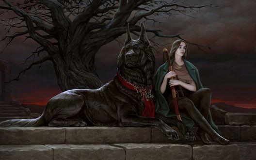 Обои Девушка с мечом в руках сидит на ступеньках возле большой черной собаки, у которой на шее висит цепь с множеством ключей