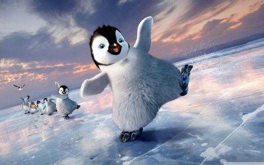 Обои Веселые пингвины из мультфильма Happy Feet Two / Делай ноги