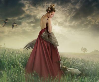 Обои Девушка с крыльями стоит в поле рядом с птицей, фотограф Svetlana Melik-Nubarova