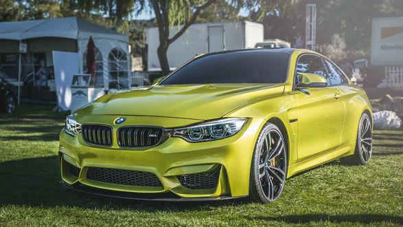 Обои Салатовый BMW на газоне