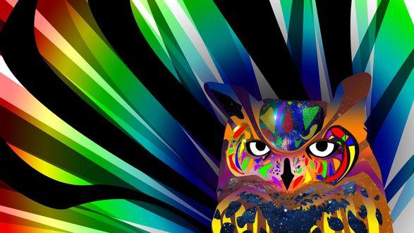 Обои Рендеринг, оригинальная цифровая сова на многоцветном фоне
