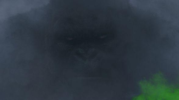 Обои Огромный Кинг Конг в тумане, Кинг-Конг / King Kong/ — приключенческий фильм