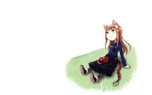 Обои Horo / Хоро из аниме Spice and Wolf / Волчица и пряности, art by Ayakura Juu