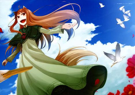 Обои Horo / Хоро на фоне неба, из аниме Spice and Wolf / Волчица и пряности, art by Ayakura Juu