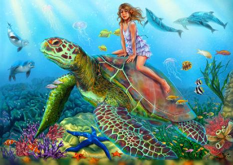 Обои Девочка катается на большой черепахе, by emiliapaw5
