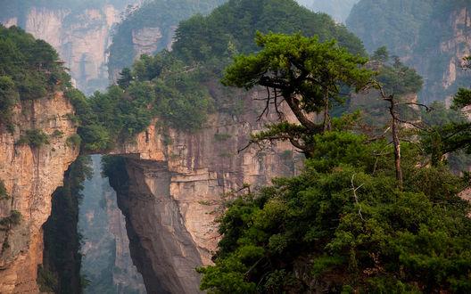 Обои Лесной национальный парк Чжанцзяцзе / Zhangjiajie National Forest Park, провинция Хунань, Китай / Hunan Province, China