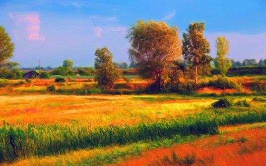 Обои Конец лета, поле, деревья, дом вдали, на фоне голубого неба, живопись