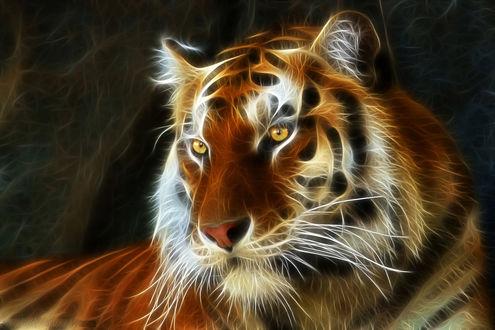 Обои Роскошный тигр с янтарными глазами на темном фоне, рендеринг