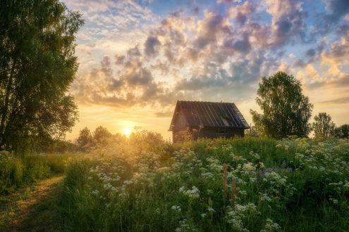 Обои Рассвет на окраине, фотограф Устюжанин Михаил