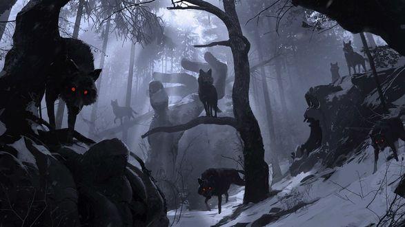 Обои Волки с красными глазами в лесу идут на жертву