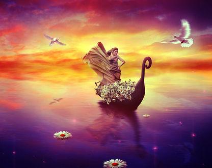 Обои Девушка в лодке с цветами, с ромашками на воде и парящими рядом голубями