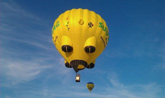 Обои Оригинальный воздушный шар в небе