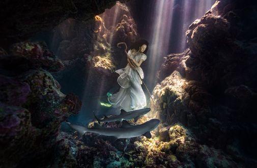 Обои Девушка в белом платье стоит на дне моря, с посохом в руках, перед акулами