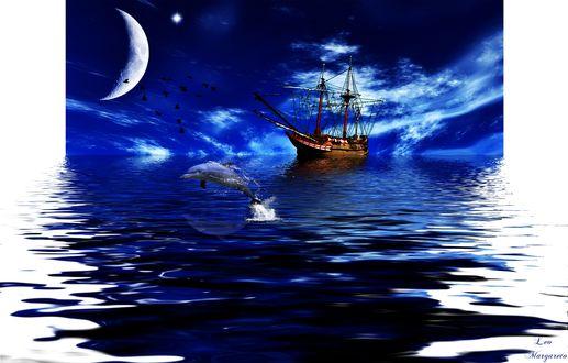 Обои Корабль со спущенными парусами невдалеке от берега, выпрыгивающий из воды дельфин, ночь, огромная Луна, птицы, by Leo Margareto