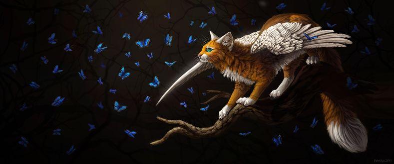 Обои Крылатая кошка и синие бабочки на дереве, by Cat-Patrisiya