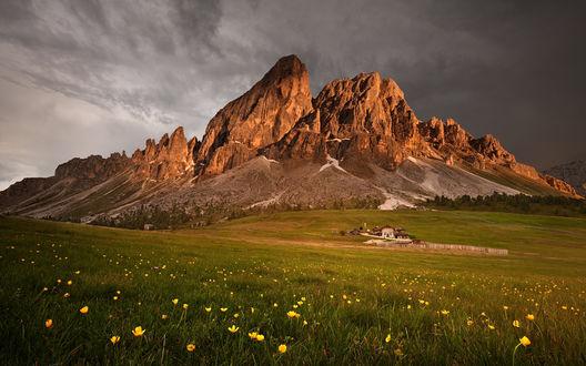 Обои Широкий луг с желтыми цветами и, виднеющимся, вдалеке домиком с оградой, на фоне высоких, скалистых гор, by Daniel Rericha