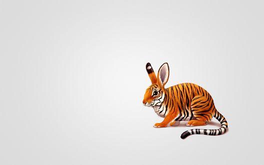 Обои Тигрозаяц, звери, которые не существуют, на бежевом фоне