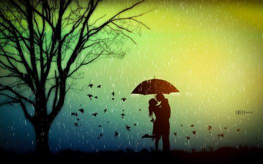 Обои Рендеринг, пара влюбленных во время дождя целуется под зонтиком, рядом одинокое дерево и птичья стая, силуэты, by Emre Enes