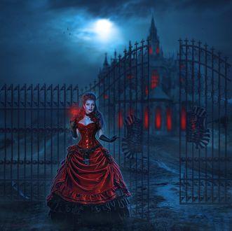 Обои Девушка в платье цвета красного вина у ворот зловещего замка, со светящейся розой в руке, лунная ночь, Transylvanian castle / Замок в Трансильвании, by Jeanne Dark