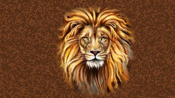 Обои Лев с ярко рыжей гривой на коричневом фоне