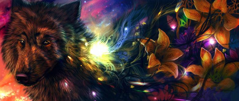 Обои Из шерсти волка растут лилии, by VisperumOris