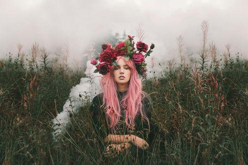 Обои Девушка с розовыми волосами, с венком из роз на голове, сидит в траве, фотограф Alexandra Cameron